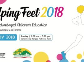 Helping Feet 2018